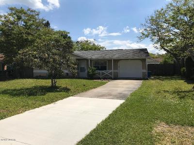 Volusia County Single Family Home For Sale: 19 Arrowhead Circle