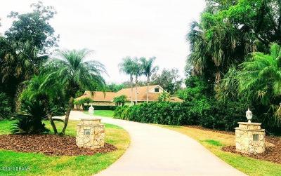 Port Orange Single Family Home For Sale: 6235 Palomino Circle