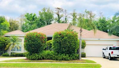 Daytona Beach Single Family Home For Sale: 408 Sea Duck Drive