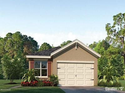 New Smyrna Beach Single Family Home For Sale: 2912 Sime Street