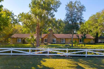 Ormond Beach Single Family Home For Sale: 104 Addison Drive