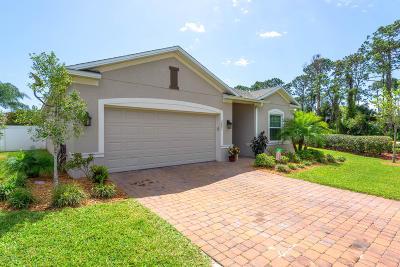 Port Orange Single Family Home For Sale: 3891 Dorsiere Avenue