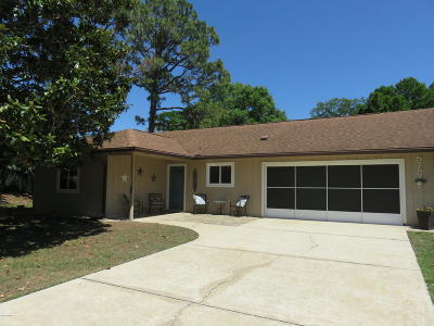 Port Orange Single Family Home For Sale: 5757 Devon Street