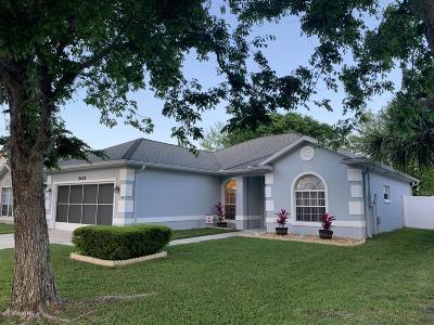 Port Orange Single Family Home For Sale: 5405 Ward Lake Drive