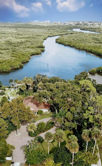 New Smyrna Beach Single Family Home For Sale: 101 Wayne Avenue