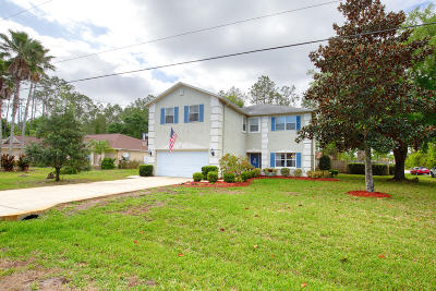 Palm Coast Single Family Home For Sale: 172 Eric Drive