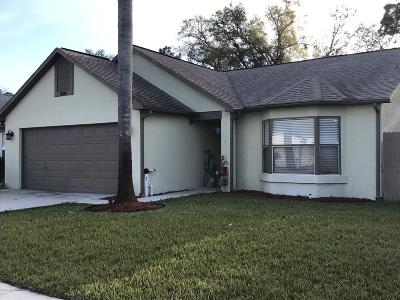 Port Orange Single Family Home For Sale: 5888 Woodpoint Terrace