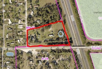 Ormond Beach Single Family Home For Sale: 307 Creek Lane