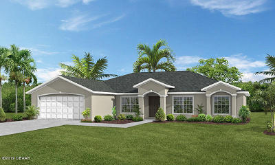 Palm Coast Single Family Home For Sale: 205 Beachway Drive