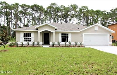 Palm Coast Single Family Home For Sale: 219 Ullian Trail