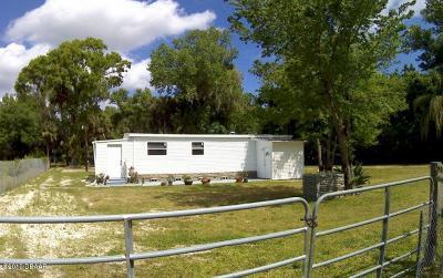New Smyrna Beach Single Family Home For Sale: 900 Cavedo Street