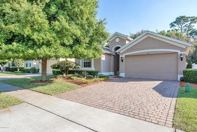 Port Orange Single Family Home For Sale: 3815 Calliope Avenue