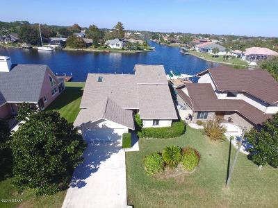 Palm Coast Single Family Home For Sale: 23 Collingwood Lane