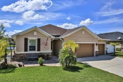 Hunters Ridge Single Family Home For Sale: 12 Abacus Avenue