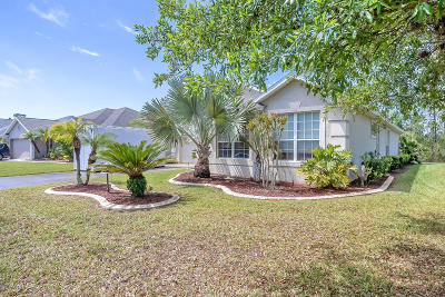 Daytona Beach Single Family Home For Sale: 344 Perfect Drive