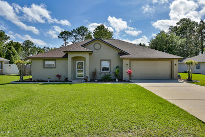Palm Coast Single Family Home For Sale: 67 Burbank Drive