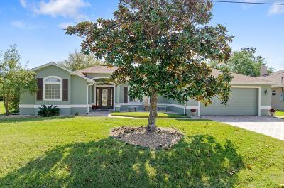 Palm Coast Single Family Home For Sale: 72 Lynbrook Drive