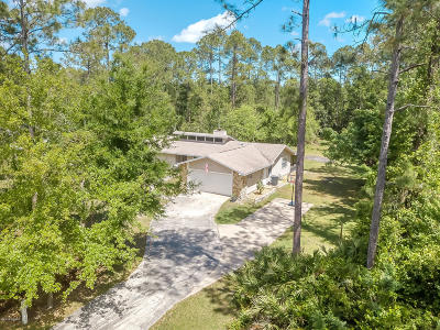 Ormond Beach Single Family Home For Sale: 181 E Woodhaven Circle
