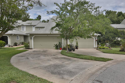 Ormond Beach Single Family Home For Sale: 49 Misners Trail