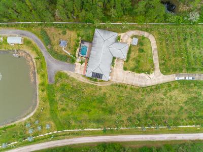 New Smyrna Beach Single Family Home For Sale: 860 State Rte 415