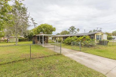Port Orange Single Family Home For Sale: 121 Niver Street