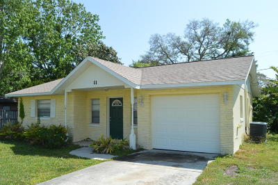 Port Orange Single Family Home For Sale: 11 Raintree Drive