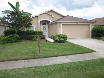 Daytona Beach Single Family Home For Sale: 342 Dahoon Holly Drive