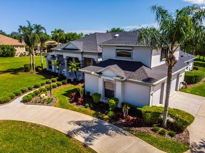 Port Orange Single Family Home For Sale: 646 Hills Boulevard