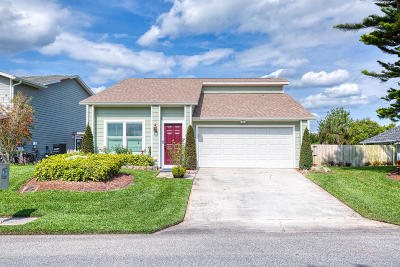 Port Orange Single Family Home For Sale: 1129 Southwinds Drive