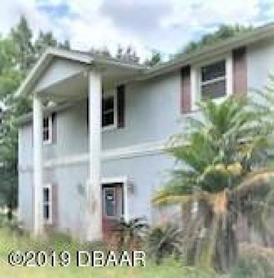 Port Orange Single Family Home For Sale: 1969 Old Daytona Road