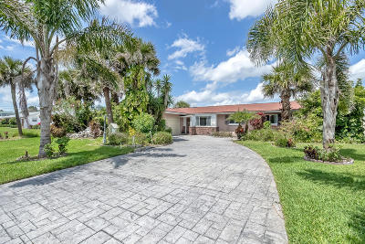 Ormond Beach Single Family Home For Sale: 217 Royal Dunes Circle