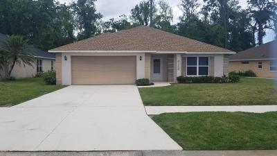 Port Orange Single Family Home For Sale: 6166 Sabal Point Circle
