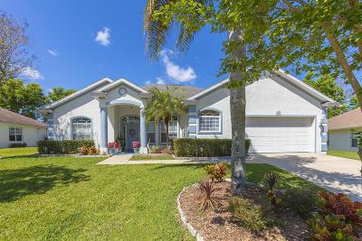 Port Orange Single Family Home For Sale: 5917 Springview Drive