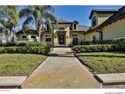 New Smyrna Beach Single Family Home For Sale: 231 Co Rd 415