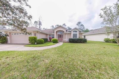 Palm Coast Single Family Home For Sale: 49 Robinson Drive