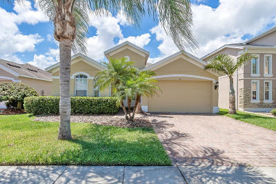 Port Orange Single Family Home For Sale: 3816 Calliope Avenue