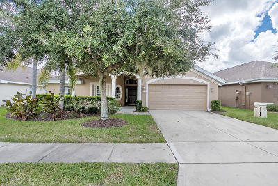 Port Orange Single Family Home For Sale: 5409 Canna Court