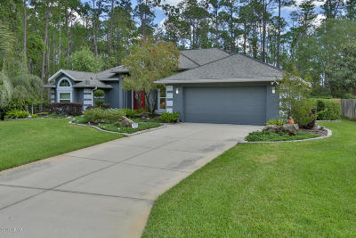 Ormond Beach Single Family Home For Sale: 41 Black Creek Way