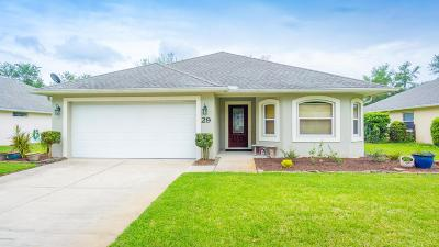 Ormond Beach Single Family Home For Sale: 29 Stoney Ridge Lane
