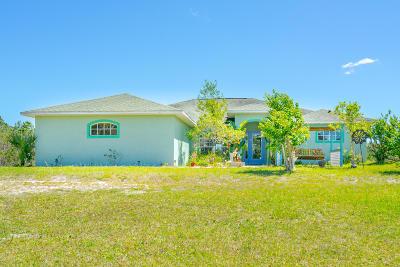 Ormond Beach FL Single Family Home For Sale: $425,000