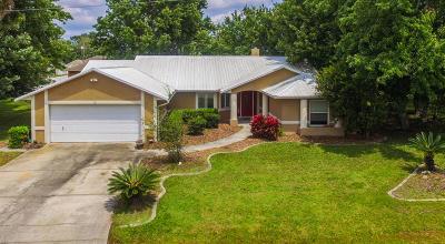 Palm Coast Single Family Home For Sale: 9 Burgess Place