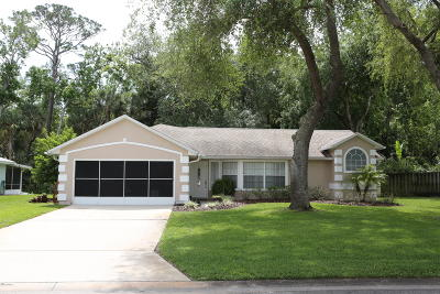 Ormond Beach Single Family Home For Sale: 22 Parkview Lane