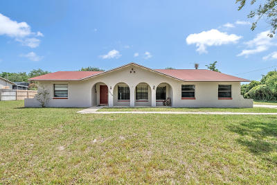 Edgewater Single Family Home For Sale: 2029 Travelers Palm Drive