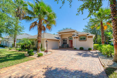 Ormond Beach Single Family Home For Sale: 3053 Monaghan Drive