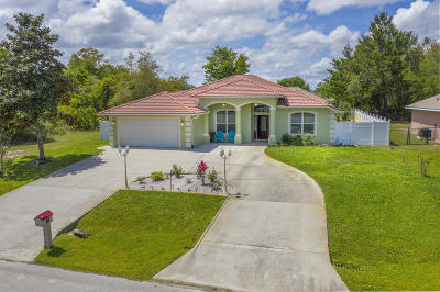 Palm Coast Single Family Home For Sale: 29 Farmsworth Drive
