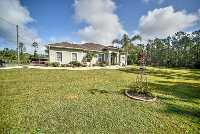 Ormond Beach Single Family Home For Sale: 197 Little Bit Lane