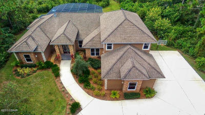 Port Orange Single Family Home For Sale: 2065 Country Farms Road