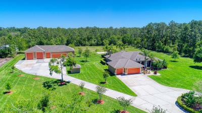 Ormond Beach Single Family Home For Sale: 181 Cone Road