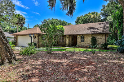 Port Orange Single Family Home For Sale: 6116 Half Moon Drive