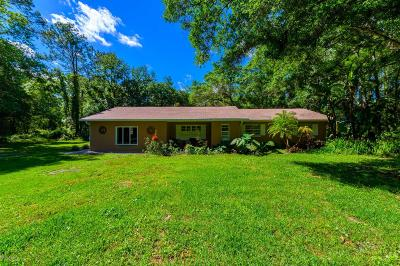 Port Orange Single Family Home For Sale: 2075 Avocado Drive